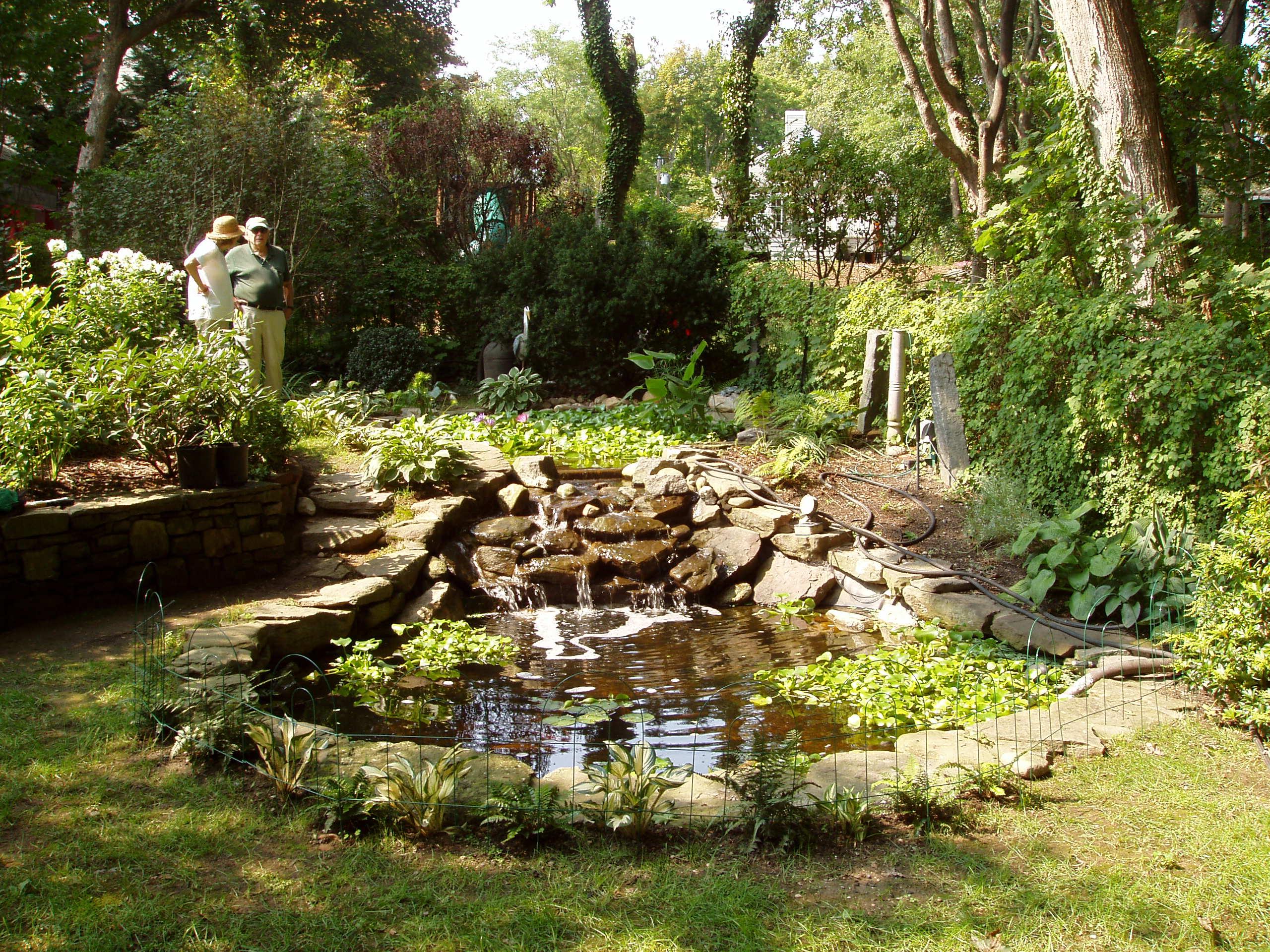 Semi inground koi ponds for Shallow koi pond